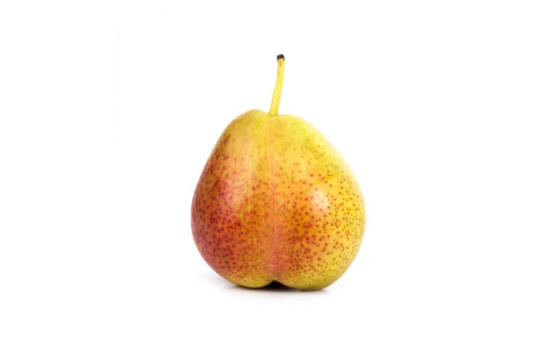 Extra Fancy Forelle Pears