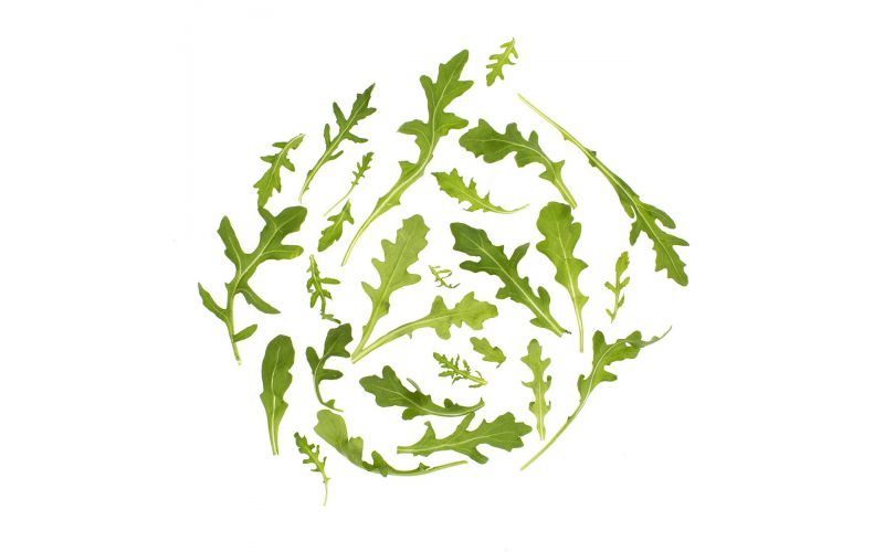 Organic Wild Baby Arugula