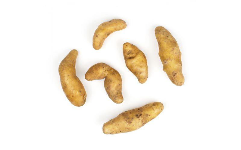 Organic Russian Banana Fingerling Potatoes