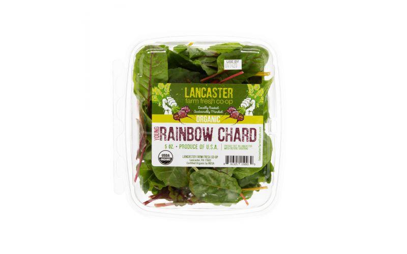 Organic Baby Rainbow Swiss Chard