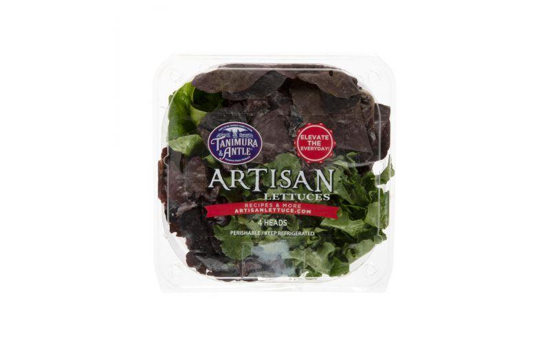 Artisan Mini Head Lettuce