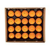 Orange Panta-Pack