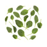Washed Flat-Leaf Spinach