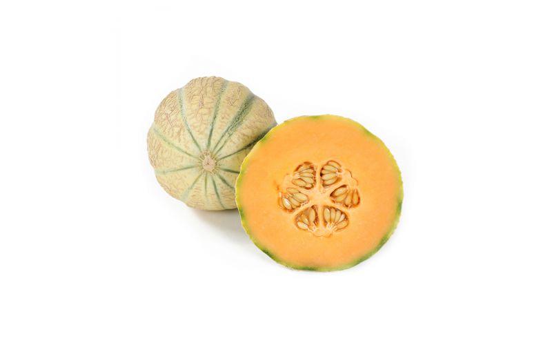 Cavaillon Melon