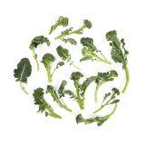 Organic Broccoli Di Ciccio