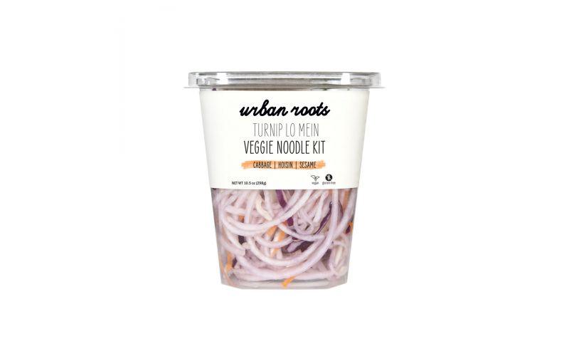 Lo Mein Veggie Noodle Kit