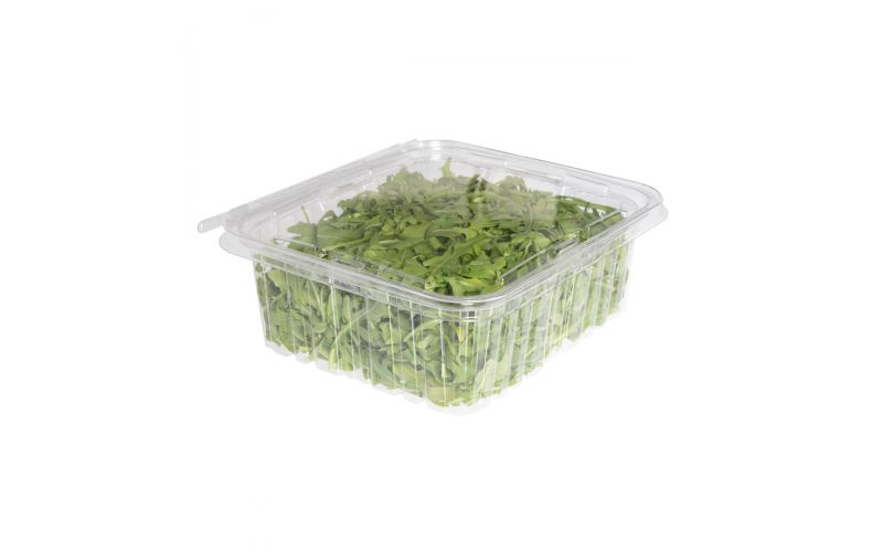 Organic Baby Arugula Salad