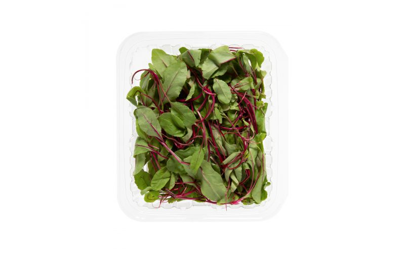Organic Baby Beet Greens With Roots