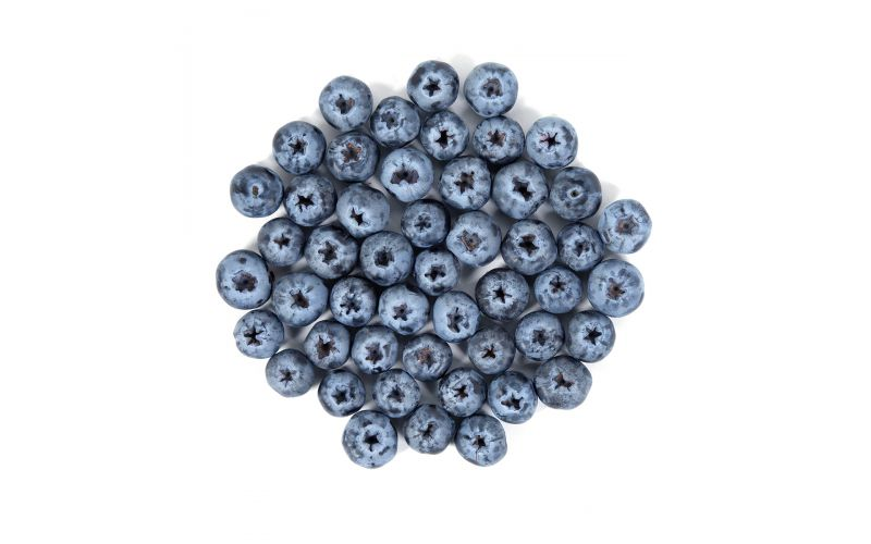 Limited Edition Sweetest Batch Jumbo Blueberries