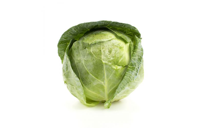 Local Green Cabbage
