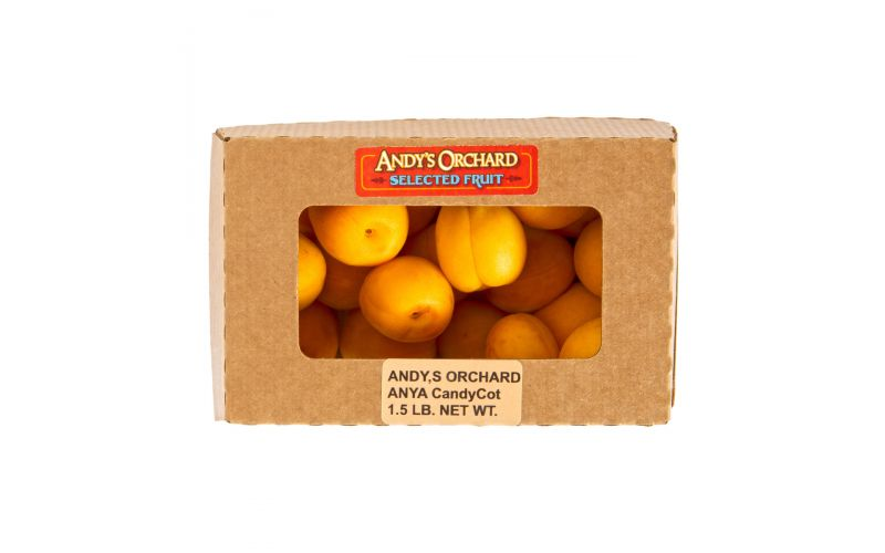 Candy Cot Apricots