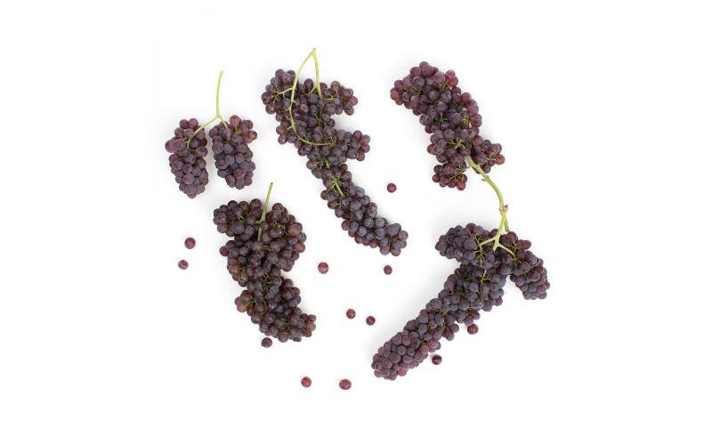 Organic Champagne Grapes
