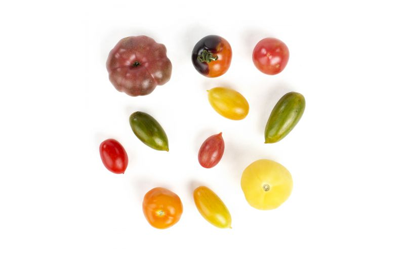Mixed Medium Heirloom Tomatoes