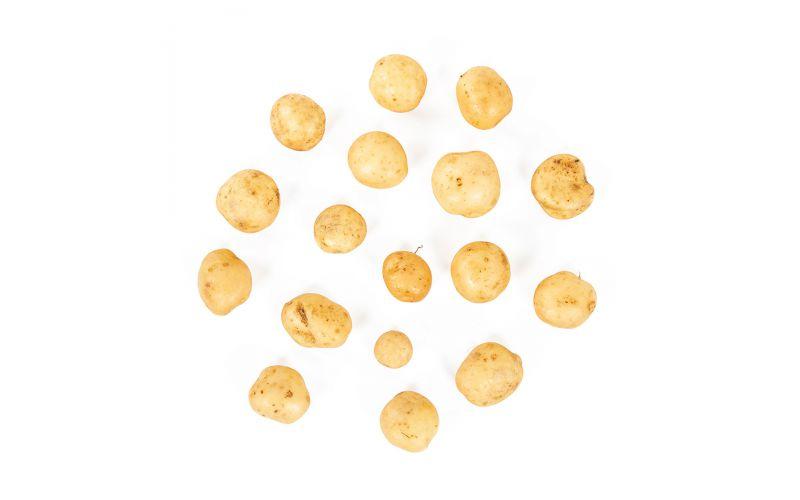 Row 7 Organic Upstate Abundance Potatoes