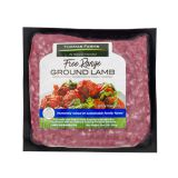 Frozen Ground Lamb