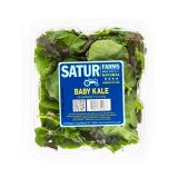 Green Baby Kale