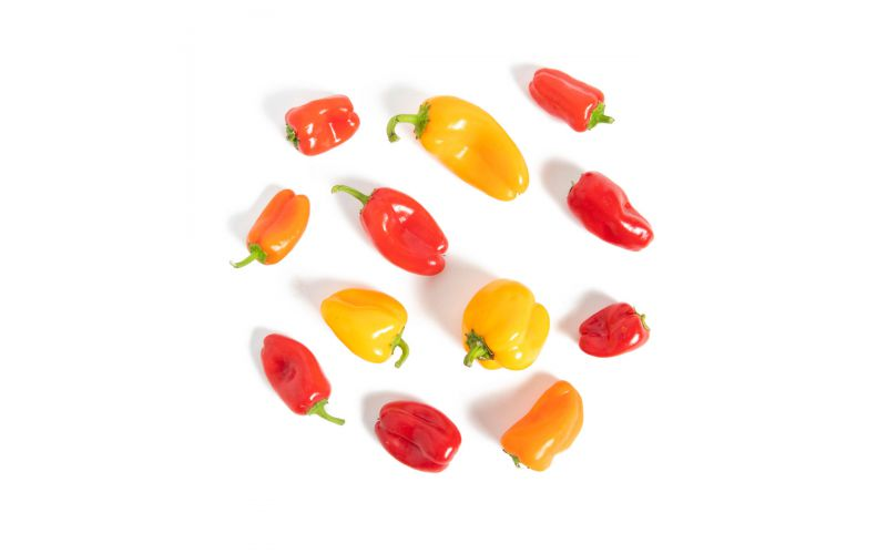 Organic Sweet Yummy Peppers