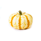Mini Tiger Stripe Pumpkin