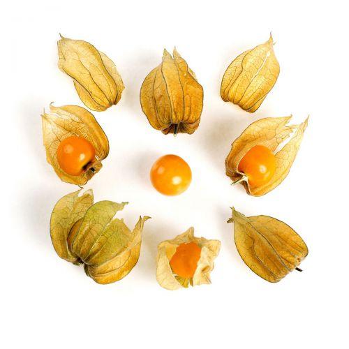 Organic Husk Cherries