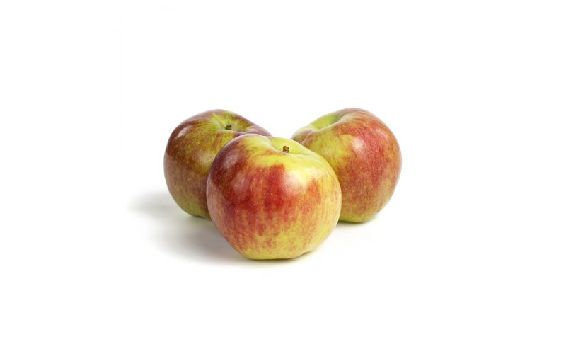 Reine des Reinette Heirloom Apples