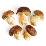 #1 Porcini Mushrooms