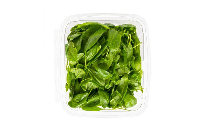Organic Baby Spinach