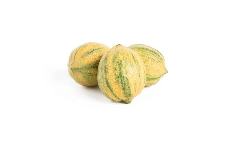 Variegated Pink Lemons