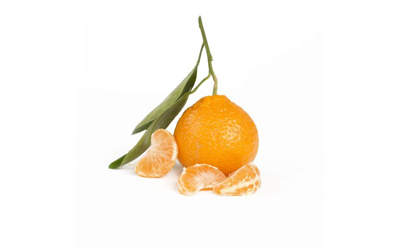 Stem and Leaf Satsuma Mandarins