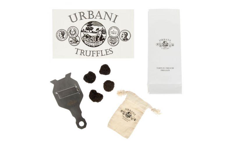 Black Perigord Truffle Gift Box