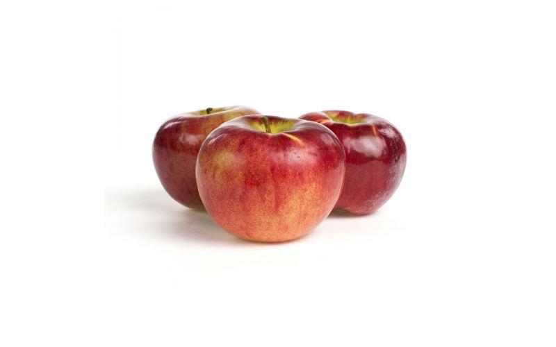 RubyFrost Apples