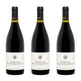 Domaine Cornu Camus Bourgogne Pinot Noir 2018