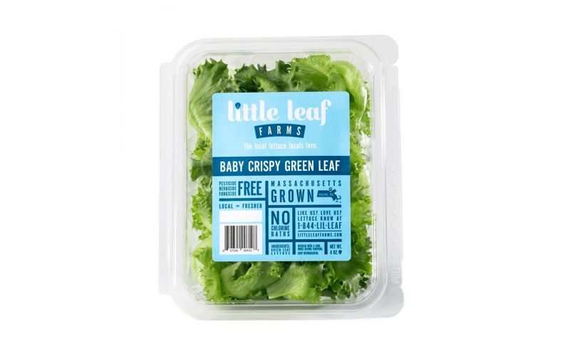 Baby Crispy Green Leaf