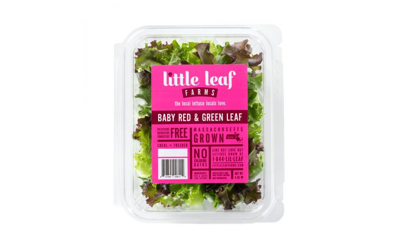 Baby Red & Green Leaf