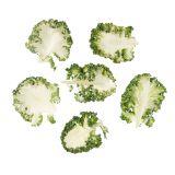 Organic Casper Baby Kale