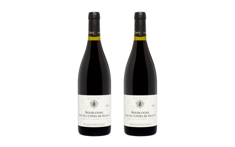 Domaine Carnu Camus Bourgogne Pinot Noir 2018 2 Pk