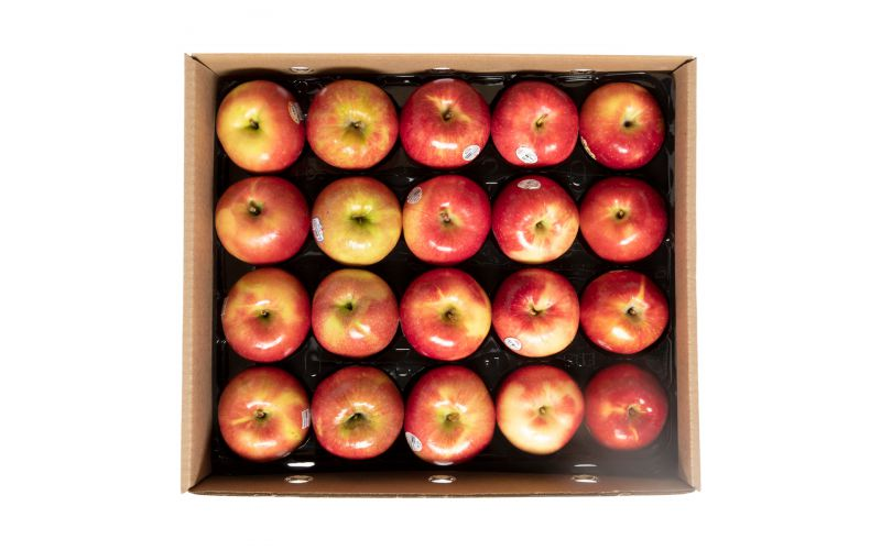 Sweet & Crispy Apple Variety Pack