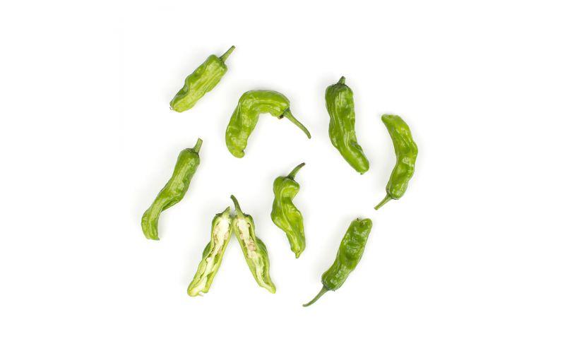 Organic Shishito Peppers