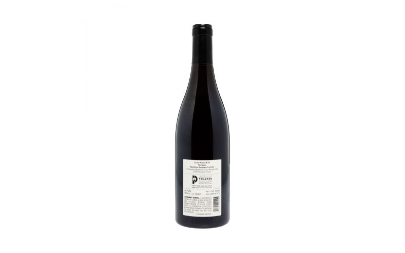 French Bistro Wine Sampler 3 Pk