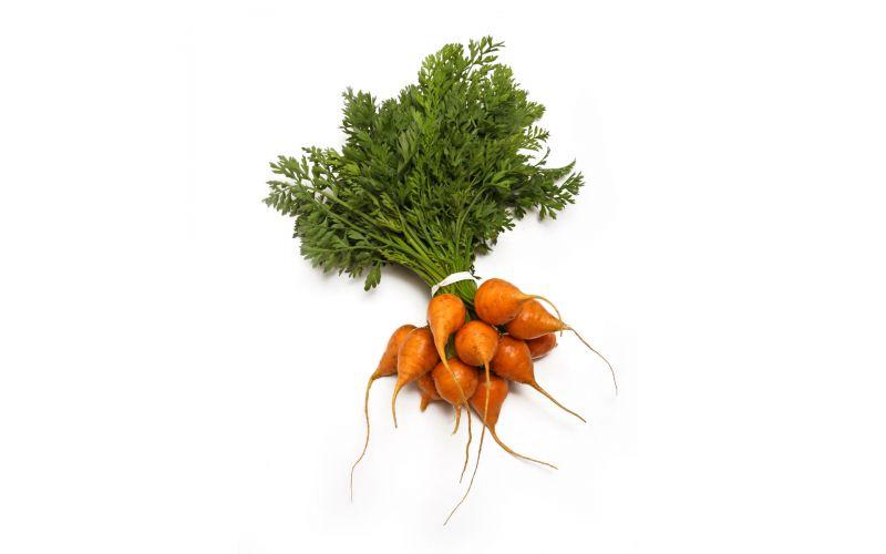 Baby Thumbelina Carrots