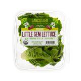 Organic Little Gem Lettuce