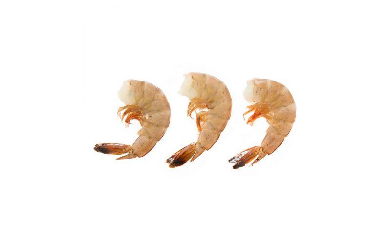 Wild Caught Shell On Atlantic White Shrimp 16 - 20