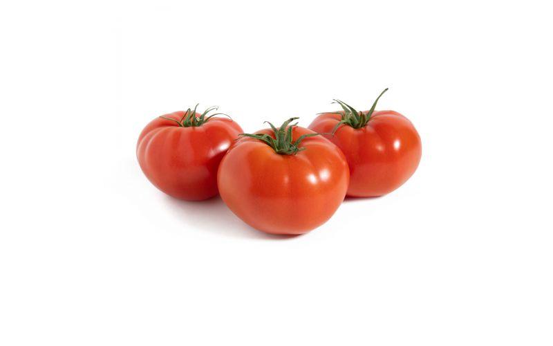 Beefsteak 4x4 Tomatoes