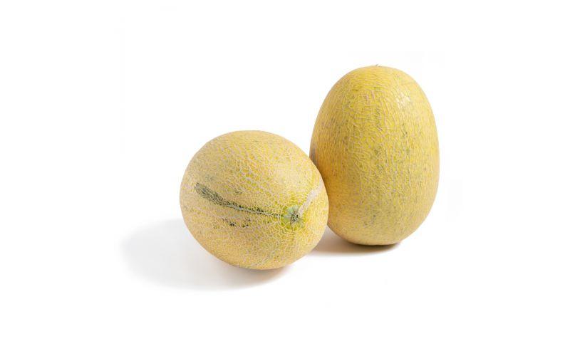 Honey Kiss Melons