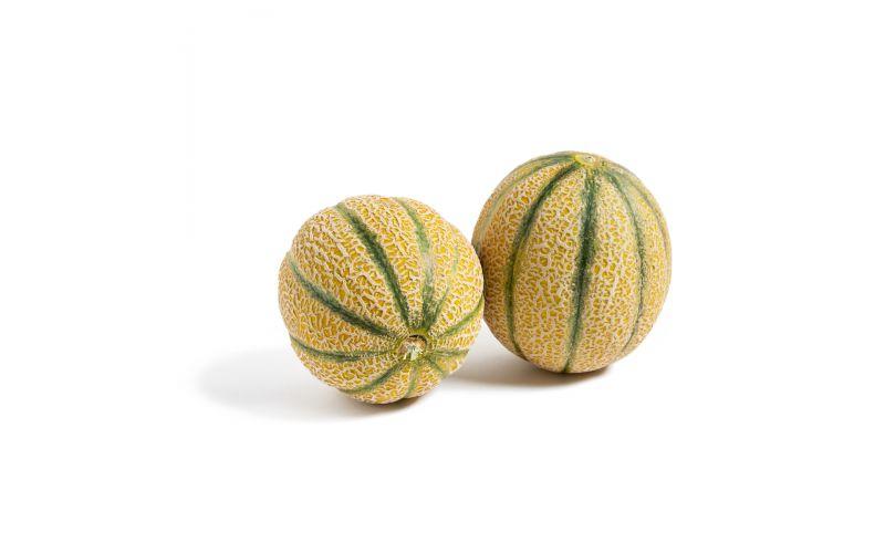 Golden Kiss Melons