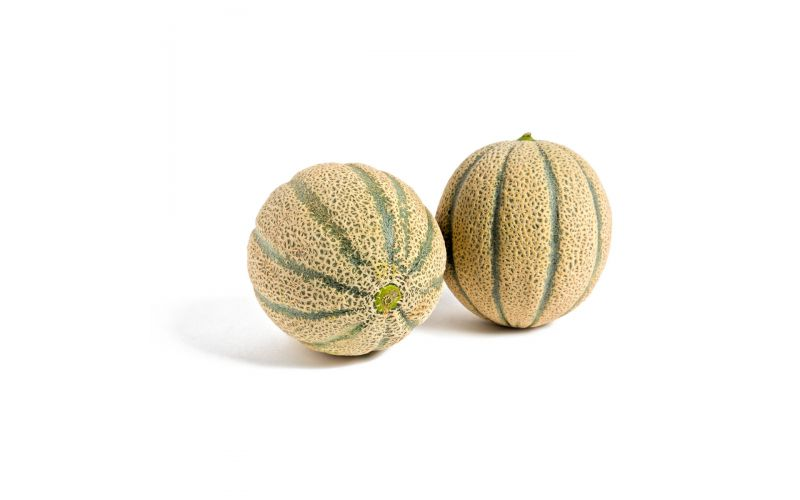 Tuscan Cantaloupe Melons