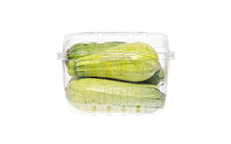 Haifa's Finest Organic Cousa Zucchini