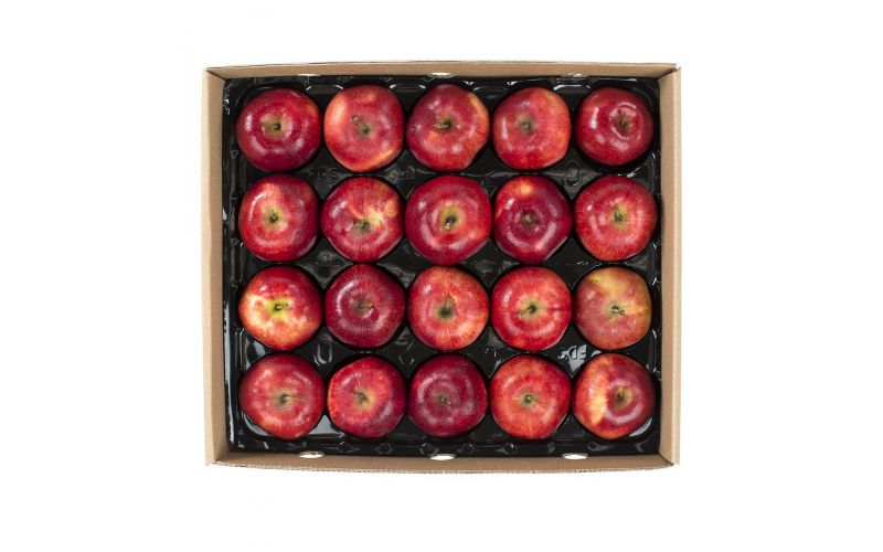 Panta-Pack Red Delicious Apples