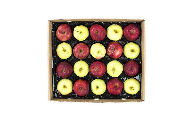 Panta-Pack Gold/Red Delicious Apple Mix