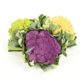 Tri-Color Cauliflower
