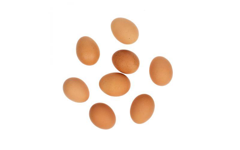 """Organic """"A"""" Large Brown Egg Cartons"""
